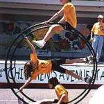 wheelgym-fisacgym-9